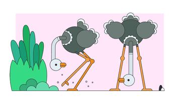 Struisvogel Vector