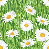 Naadloze bloemmotief. Weide zomerbloemen vector