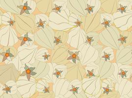 Floral val naadloze patroon Physalis achtergrond. Bloei tuintextuur