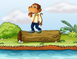 Een aap die zich op een logboek bevindt