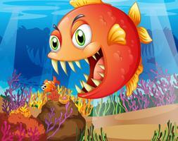 Een roofdier en een prooi onder de zee