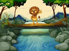 Een leeuw die bij de boomstam boven de stromende rivier staat