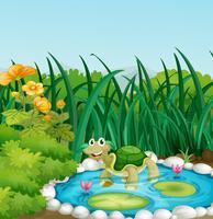 Een schildpad in de vijver met waterlelies