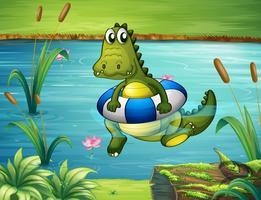 Een krokodil aan de rivier met een boei