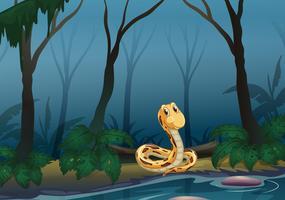 Een slang bij de vijver