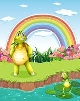 Een schildpad en een kikker bij de vijver met een regenboog in de lucht