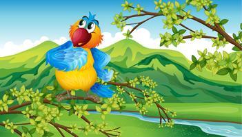 Een papegaai dichtbij de rivieroever vector