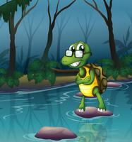 Een schildpad in de vijver