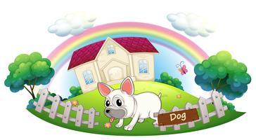 Een hond die een huis bewaakt