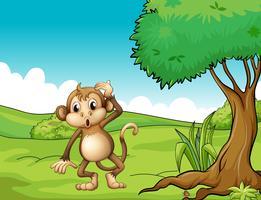 Een vermoeide aap