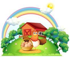 Een kip met een mand met eieren op de boerderij