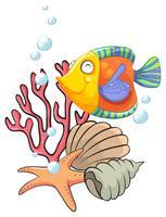 Verschillende zeedieren