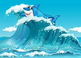 Een haai boven de grote golven