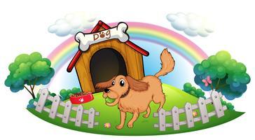 Een hond en een regenboog vector