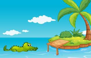 Een krokodil die naar het eiland gaat