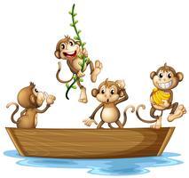 Apen op boot