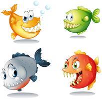 Vier verschillende soorten vissen met grote hoektanden
