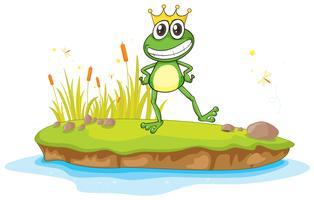een kikker en water