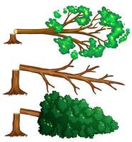 Gehakte bomen op de vloer