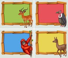 Frame-ontwerpen met veel dieren vector
