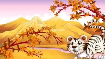 Een tijger met een rivier aan de achterkant