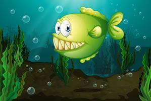 Een groene vis met grote giftanden onder de zee