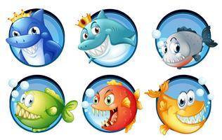 Zeedieren op ronde insignes