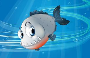 Een piranha onder de zee