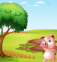 Een varken dat de varkensboerderij introduceert
