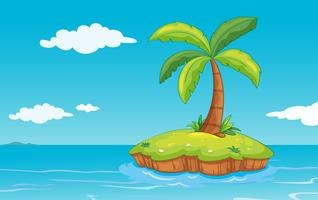 palmboom op eiland