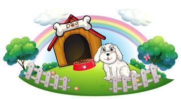 Een hond in een hondenhuis met omheining