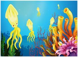 Gele inktvissen in de buurt van de koraalriffen