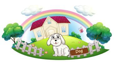 Een witte hond zit in het hek