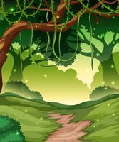 Weg in een bos vector