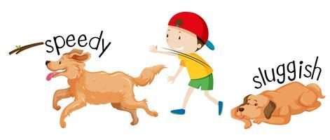 Snelheid en trage hond vector