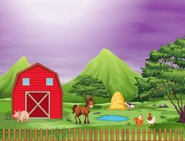 schattige dieren op een boerderij