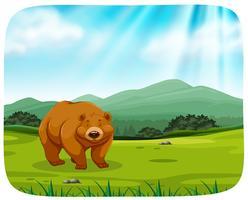 schattige beer in de natuur vector