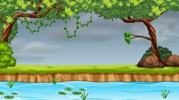 Een scène van het natuurpark vector