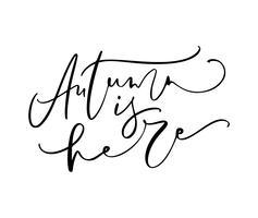 De herfst is hier die kalligrafietekst van letters voorzien die op witte achtergrond wordt geïsoleerd. Hand getrokken vectorillustratie. Zwart-wit poster ontwerpelementen vector