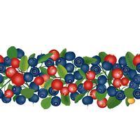 Cranberry seamless pattern Berry floral achtergrond. Zomer eten vector