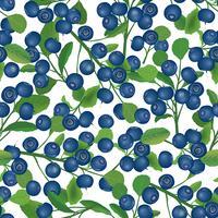 Cranberry seamless pattern Berry floral achtergrond. Zomer eten