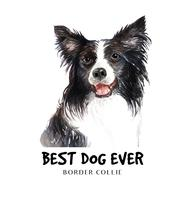 aquarel Border Collie van een hond.