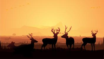 Hert silhouet vector