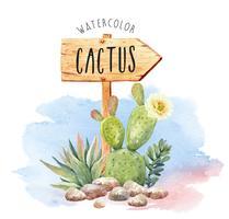 Aquarel Cactussen en vetplanten in bloempot. vector