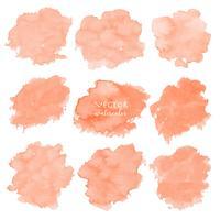 Oranje die waterverf op witte achtergrond, Vectorillustratie wordt geplaatst.