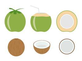 Vectorillustratie van vastgestelde verse die kokosnoot op witte achtergrond wordt geïsoleerd