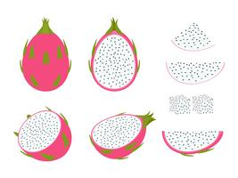 Set van dragon fruit geïsoleerd op een witte achtergrond - vectorillustratie