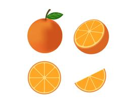 Verse oranje fruitvector geïsoleerde reeks op witte achtergrond - Vectorillustratie vector