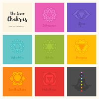 De zeven chakra's symbool vector set