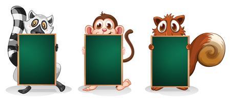 Drie dieren met lege planken